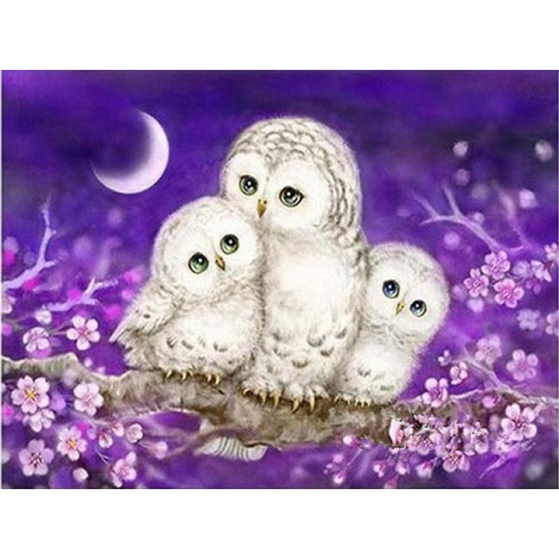 2019 Cheap Cute Owls...