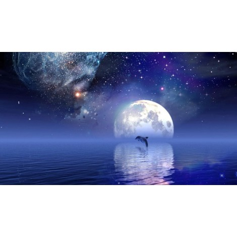 New Starry Sky Moon Dolphin Embroidery Mosaic VM92188