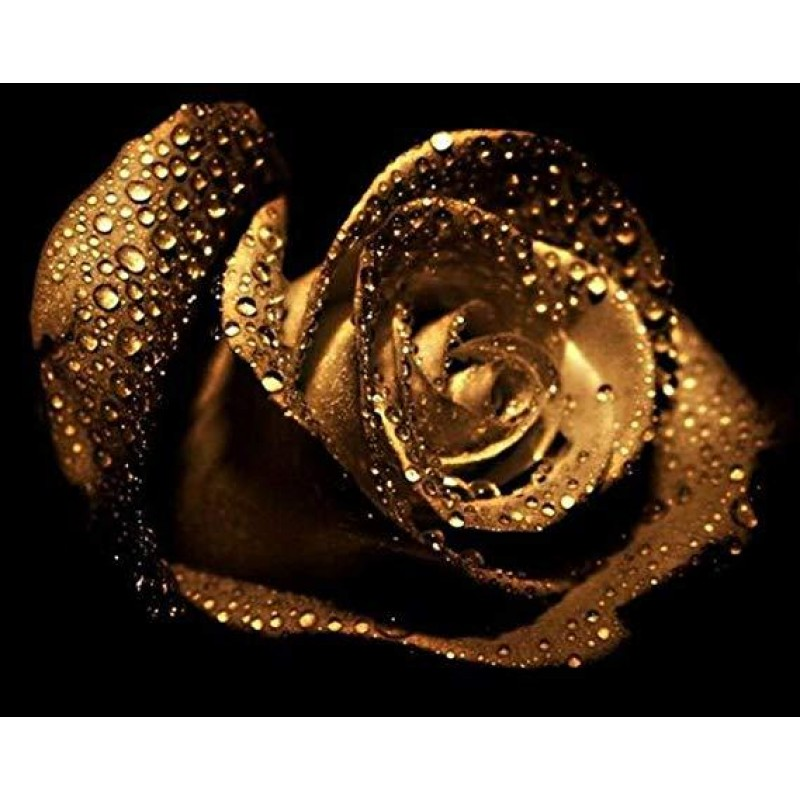 Golden Rose 5d Diy D...