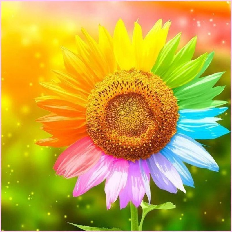 Colorful Sunflower 5...
