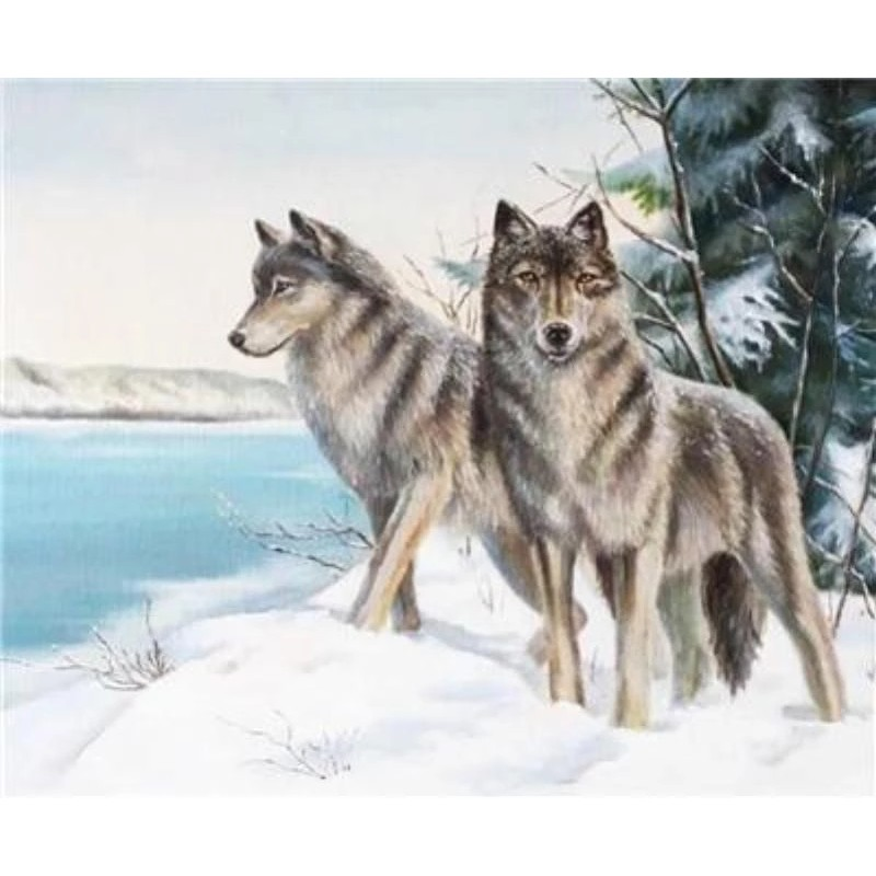 2019 Two Wolves In W...