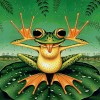 Full Drill 5D Diy Embroidery Funny Frog Diamond Painting Kits UK NA0133