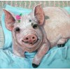 Hot Sale Special Pig 5D Diy Embroidery Cross Stitch Diamond Painting Kits UK NA00343