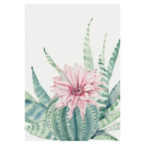 Best Watercolor Cactus 5D Diy Embroidery Diamond Painting Kits UK NA0357