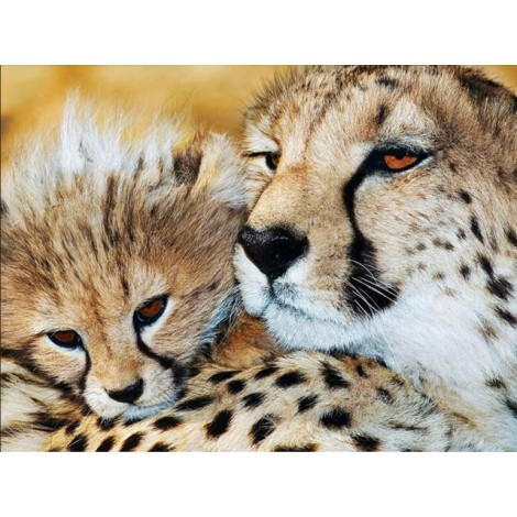 2019 Hot Sale Wall Decor Animal Leopard Portrait 5d Cross Stitch Kits UK VM8414