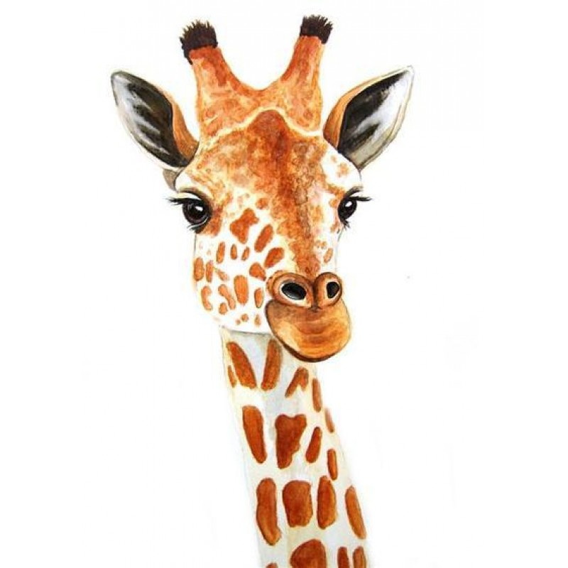 Hot Sale Giraffe 5d ...