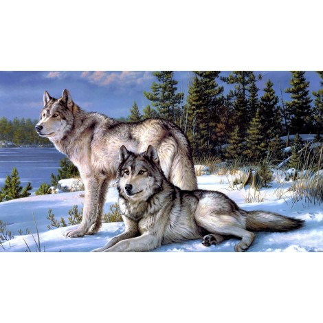 2019 Best Gift Two Wolves In Winter Diy 5D Mosaic Diamond Painting UK VM5000
